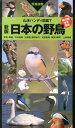 日本の野鳥新版 (山溪ハンディ図鑑) [ 叶内拓哉 ]