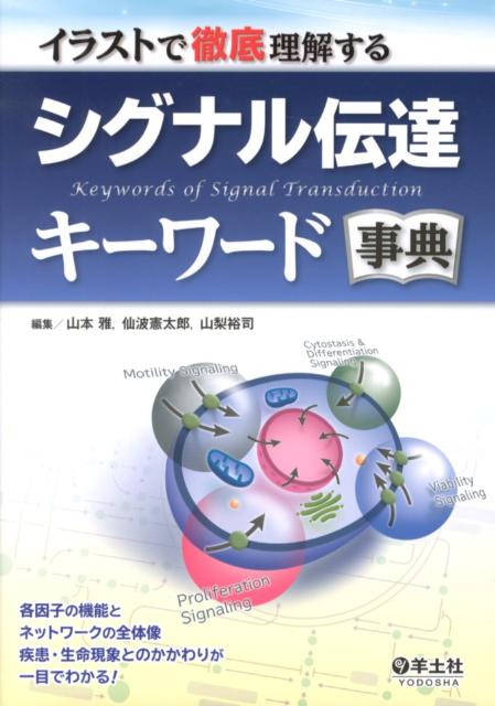 イラストで徹底理解するシグナル伝達キーワード事典...の商品画像