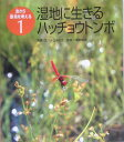 湿地に生きるハッチョウトンボ (虫から環境を考える) [ 水上みさき ]