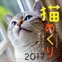 猫めくりカレンダー(2017)