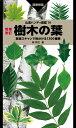 増補改訂 樹木の葉 (山溪ハンディ図鑑)
