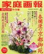 家庭画報ライト版 2016年 04月号 [雑誌]