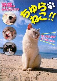 ちゅらねこ!! 沖縄の自由なねこたち 猫書籍通販