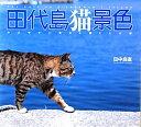 田代島猫景色