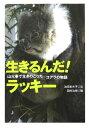 生きるんだ!ラッキー 山火事で生きのこったコアラの物語 (動物感動ノンフィクション) [ 池田まき子