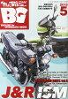 Mr.Bike (ミスターバイク) BG (バイヤーズガイド) 2015年 05月号 [雑誌]