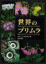 【バーゲン本】世界のプリムラ [ 世界のプリムラ編集委員会編 ]