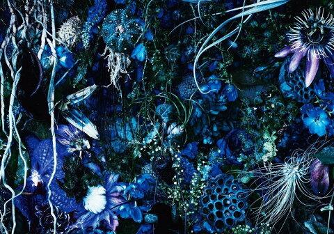 ONENESS M (初回限定盤 CD+PHOTO BOOK) [ SUGIZO ]
