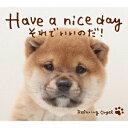 Have a nice day〜それでいいのだ!/α波オルゴール [ (オルゴール) ]