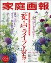 家庭画報 2017年 06月号 [雑誌]