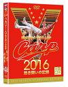 2016カープ熱き闘いの記録 V7記念特別版 【DVD2枚組】 [ (スポーツ) ]