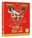 2016カープ熱き闘いの記録 V7記念特別版 【Blu-ray2枚組】 [ (スポーツ) ]