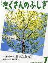一本の木に葉っぱは何枚?(月刊 たくさんのふしぎ 2014年 07月号)