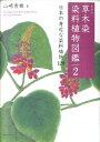 草木染 染料植物図鑑(2)新装版 [ 山崎青樹 ]