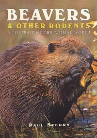 Beavers_��_Other_Rodents