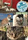 �ˤ�� DVD-BOX