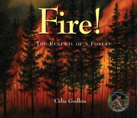 Fire����_The_Renewal_of_a_Forest