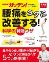 NHKガッテン! 腰痛をラクに改善する!科学の特効ワザ (生...