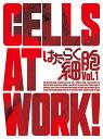 はたらく細胞 1(完全生産限定版) [ 花澤香菜 ]...