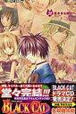 Black cat(20)