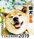 2019年 柴犬まる週めくり卓上カレンダー [ 小野 慎二郎 ]