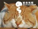 猫カレンダーのら(2...