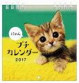 2016年 プチカレンダー にゃん