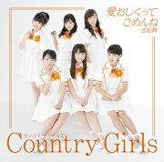 愛おしくってごめんね/恋泥棒 (初回限定盤A CD+DVD)