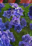 永远的花[永遠の花 [ 蜷川実花 ]]