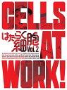 はたらく細胞 2(完全生産限定版)【Blu-ray】 [ 花...