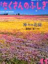 月刊 たくさんのふしぎ 2015年 11月号 [雑誌]
