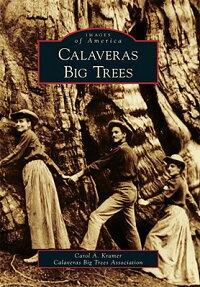 Calaveras_Big_Trees