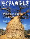 マダガスカルのバオバブ(月刊 たくさんのふしぎ 2014年 12月号)