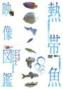 シンフォレストDVD 熱帯魚映像図鑑 バーチャル・アクアリウム 映像と音で愉しむ美しき熱帯魚の世界  ...