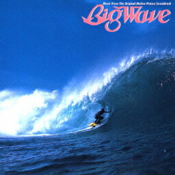 Big Wave(30th Anniversary Edition) [ <strong>山下達郎</strong> ]