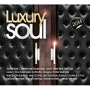 【輸入盤】Luxury Soul 2014 [ Various ]