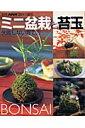 ミニ盆栽と苔玉