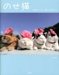 のせ猫(かご猫ファミリーと新入りみみち)