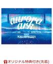 """【楽天ブックス限定先着特典】BUMP OF CHICKEN TOUR 2019 aurora ark TOKYO DOME (通常盤)(""""aurora ark""""スペシャルポスター(楽天ブ.."""