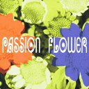 Other - Passion Flower [ T-SQUARE ]