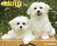 Just_Maltese_Calendar