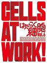 はたらく細胞 6(完全生産限定版)【Blu-ray】 [ 清...