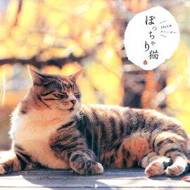 楽天ブックス: ぽっちゃり猫カレンダー - …