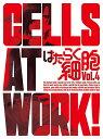 はたらく細胞 4(完全生産限定版) [ 花澤香菜 ]...
