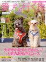 愛犬と行く旅(2016?2017)