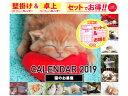 猫のお昼寝 W&Dカレンダー(2019) ([PBカレンダー])