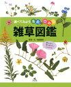 雑草図鑑 (調べてみよう名前のひみつ) [ 亀田龍吉 ]