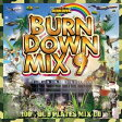 BURN DOWN MIX 9