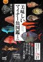 【マイナビ文庫】美味しいマイナー魚図鑑ミニ [ ぼうずコンニャク 藤原昌高 ]