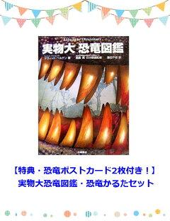 【特典・恐竜ポストカード2枚付き!】実物大恐竜図鑑・恐竜かるたセット